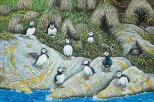 Ten Little Puffins